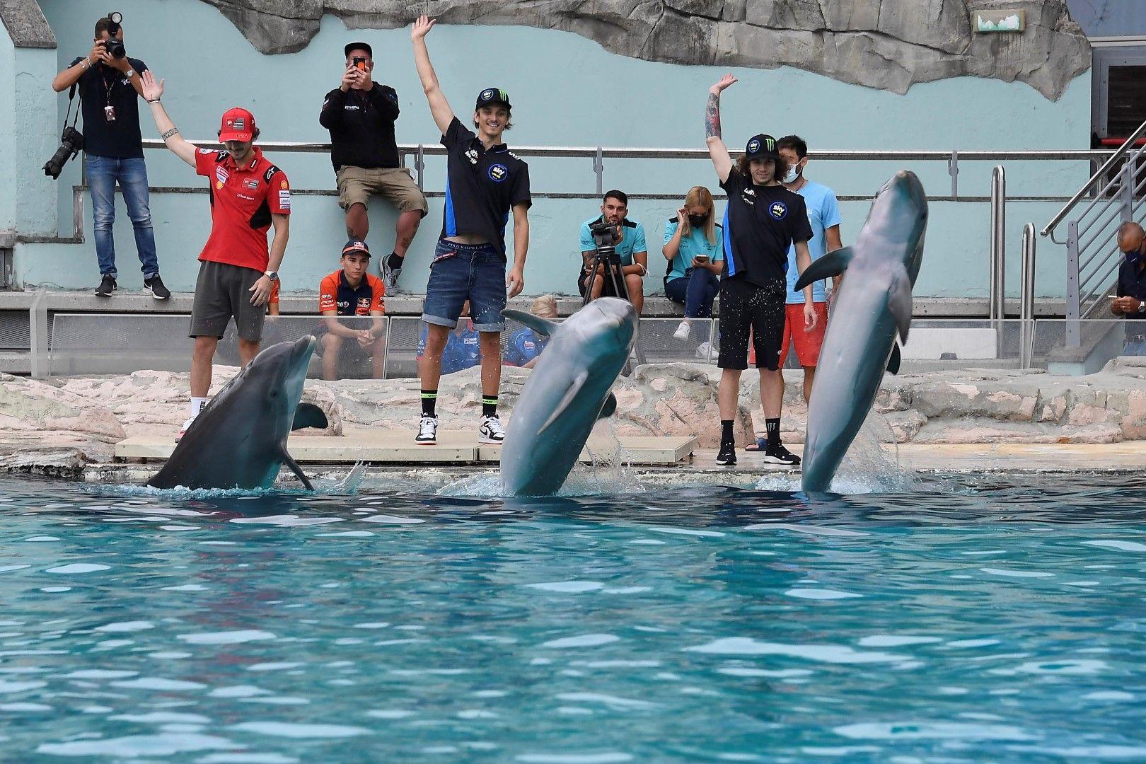 Баная, Марини и Безеки в игра с делфините.
