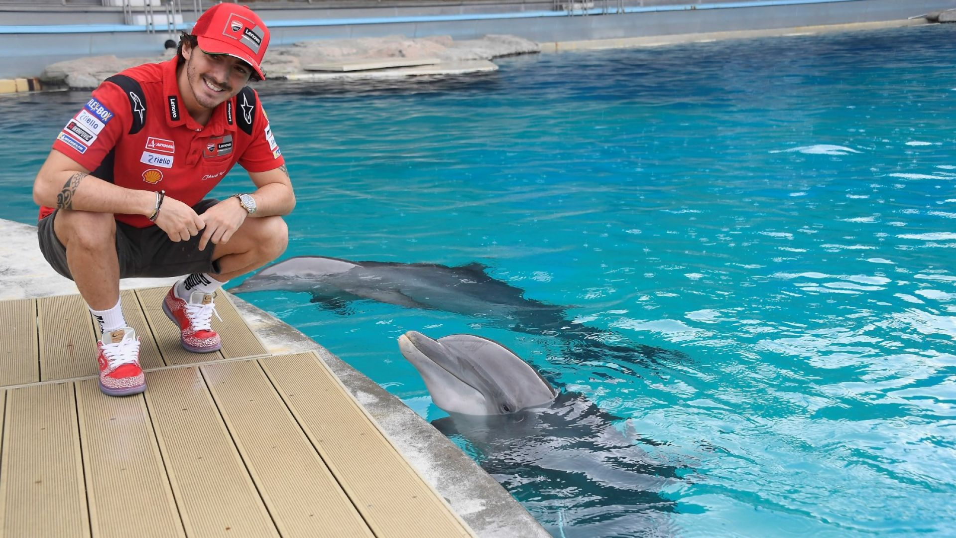 Асовете от Moto GP влязоха в една различна надпревара - с делфини
